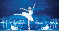 Лебединое озеро балет