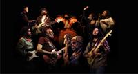 The Wailers концерт группы