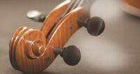 Музыка Австрии концерт