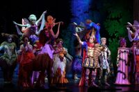 Фея карнавала оперетта