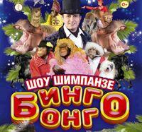Цирк Бинго-Бонго цирковое представление