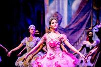 Спящая красавица балет