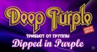Dipped in Purple концерт