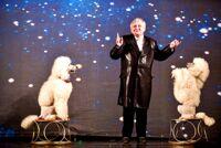 Московское шоу зверей детский спектакль