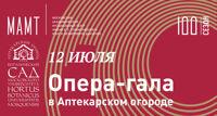 Оркестр МАМТ им. Станиславского концерт